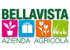 AZIENDA AGRICOLA BELLAVISTA