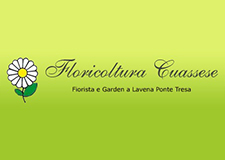 FLORICOLTURA CUASSESE