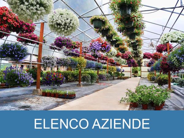 ELENCO AZIENDE