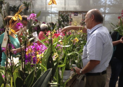 ALAO – Mostra Orchidee 2015