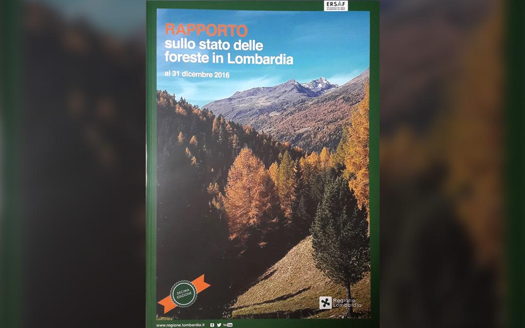 RAPPORTO SULLO STATO DELLE FORESTE IN LOMBARDIA AL 31 DICEMBRE 2016